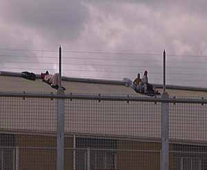 Hunger strikers on the roof of the Baxter detention centre